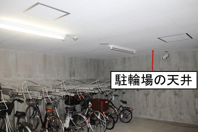 駐輪場天井裏