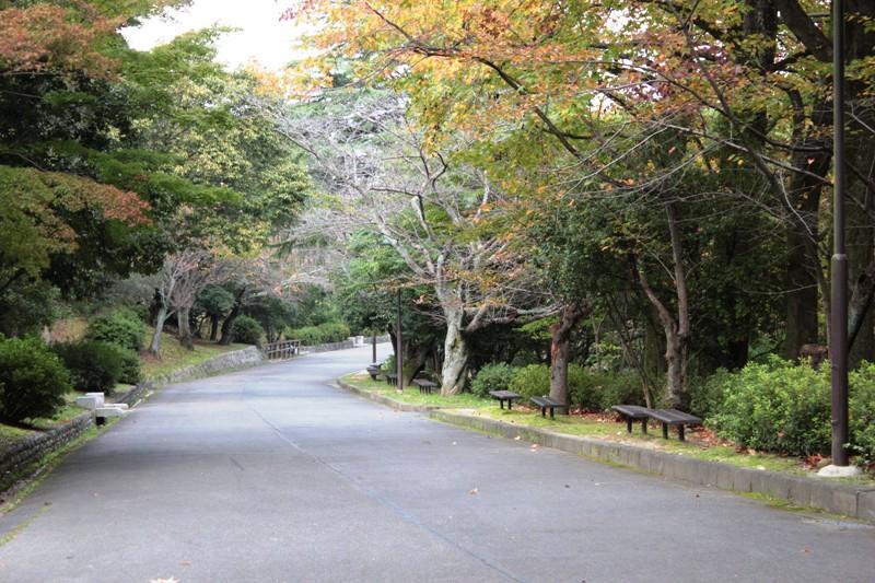 yamagami05