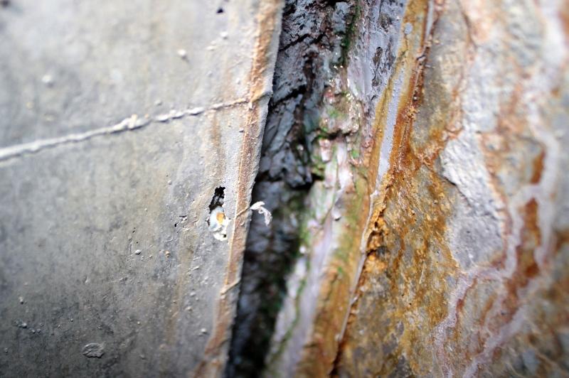 内部5通り柱と地中梁2