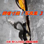 catch48