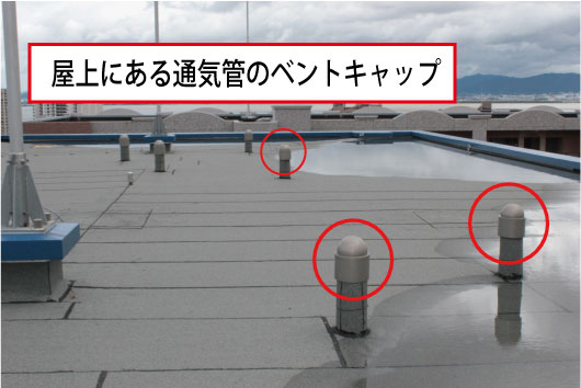 2015/12/b_cap1.jpg