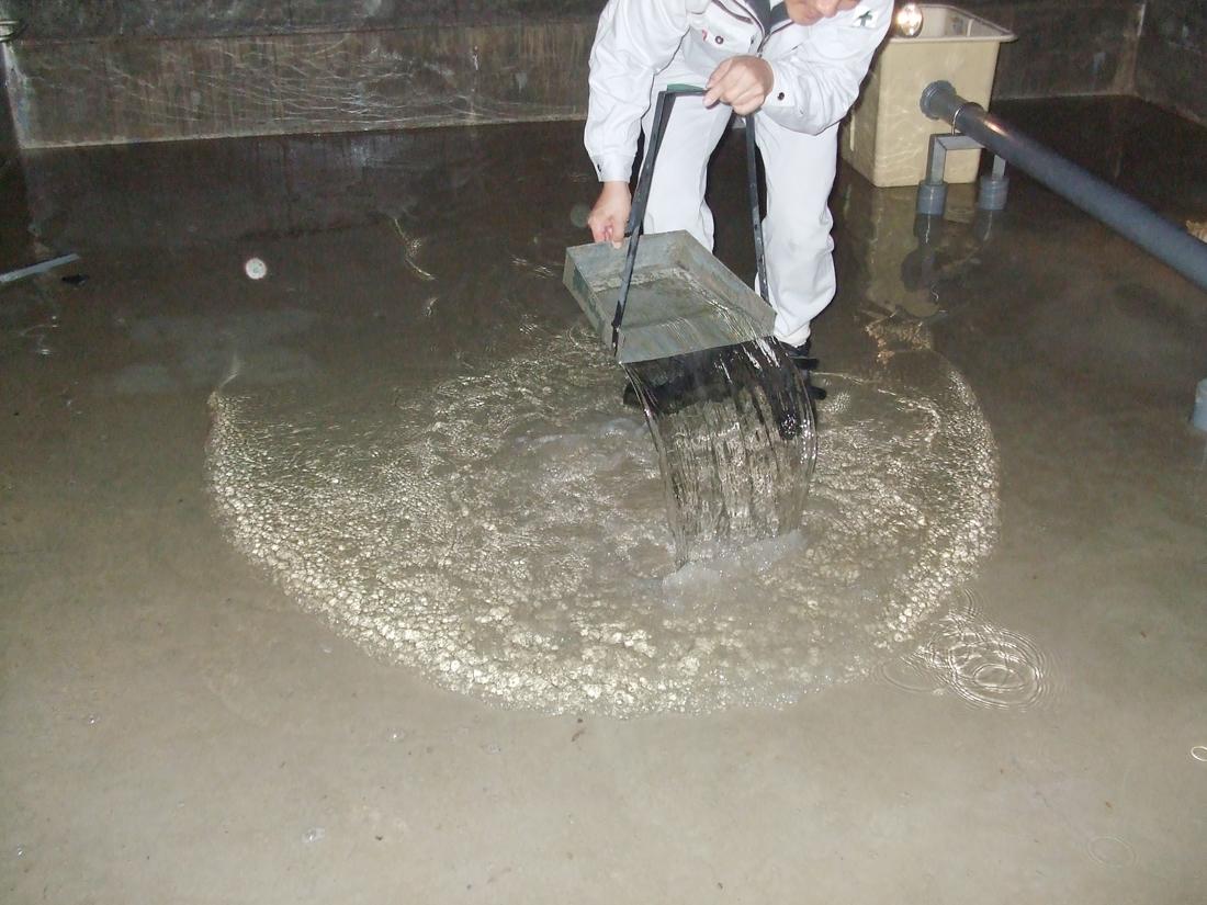 ずさんな施工による排水不良の数々